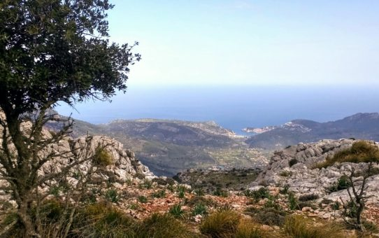 Serra de Tramuntana – De Soller au Castel d'Alaro